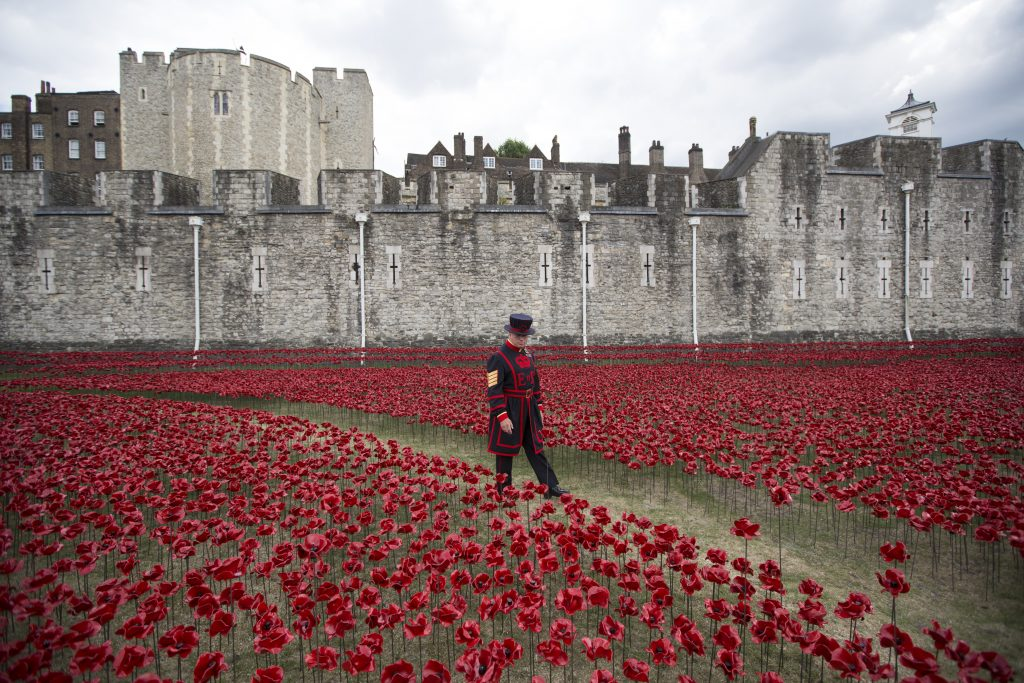LONDON, ENGLAND - JULY 28: Yeoman Serjeant Bob Loughlin admires a section of an installation entitled 'Blood Swept Lands and Seas of Red' by artist Paul Cummins, made up of 888,246 ceramic poppies in the moat of the Tower of London, to commemorate the First World War on July 28, 2014 in London, England. Each ceramic poppy represents an allied victim of the First World War and the display is due to be completed by Armistice Day on November 11, 2014. After Armistice Day each poppy from the installation will be available to buy for 25 GBP. (Photo by Oli Scarff/Getty Images)